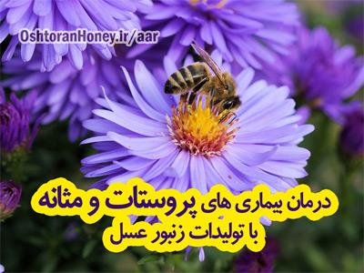 درمان بیماری پروستات و مثانه با عسل و گرده گل زنبور