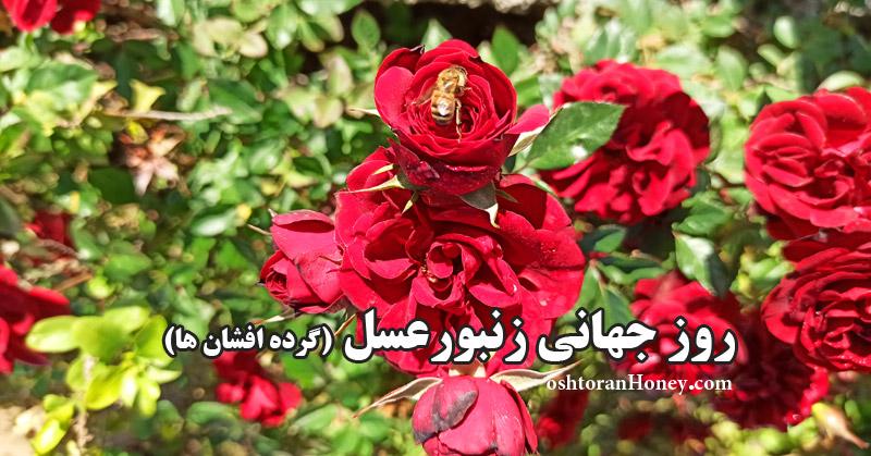 روز جهانی زنبور عسل و گرده افشان ها